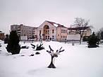 ...например, забавные олени в снегу...