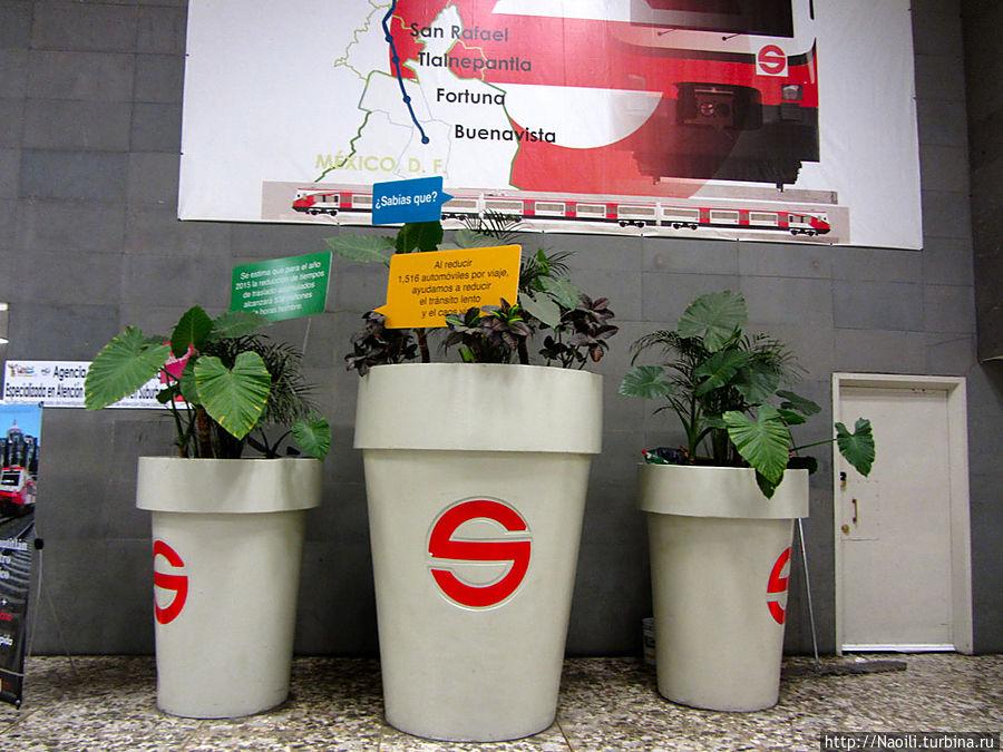 Цветы в горшочках на вокзале