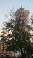 Часовая башня (Зегарова вежа)