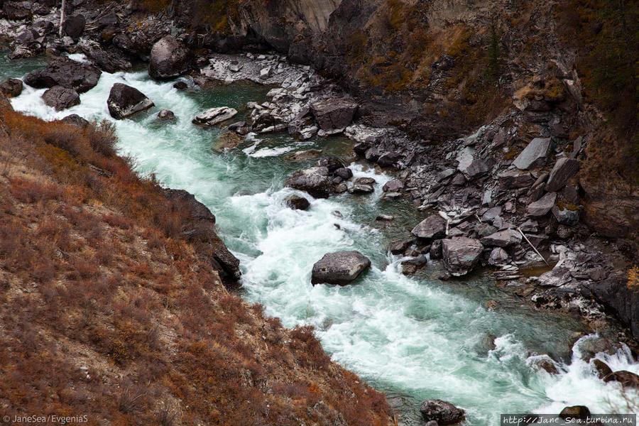 Река Чуя. Осенью воды мало.