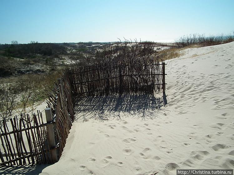 Укрепления пляжа