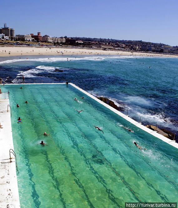 Бассейн у моря — это класс! Можно плавать в любую погоду. Из интернета. Сидней, Австралия