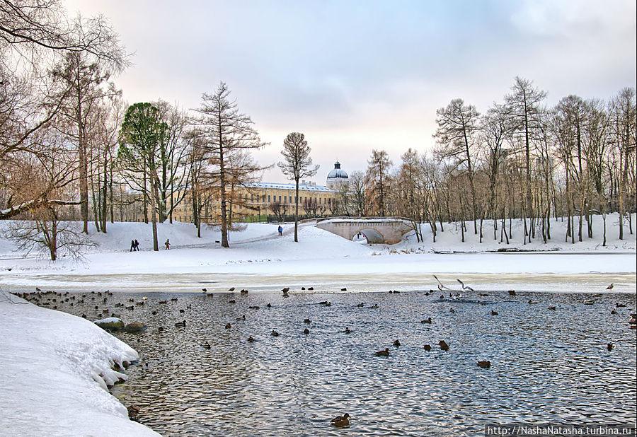 Гатчинский дворец-музей и Дворцовый парк