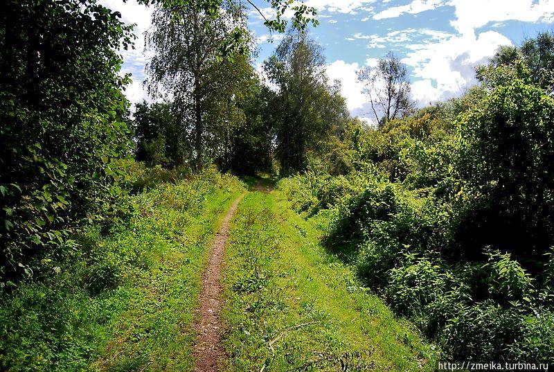 После вышки и первой площадки тропа чем дальше — тем больше становится похожа не на дорогу, а на тропку.