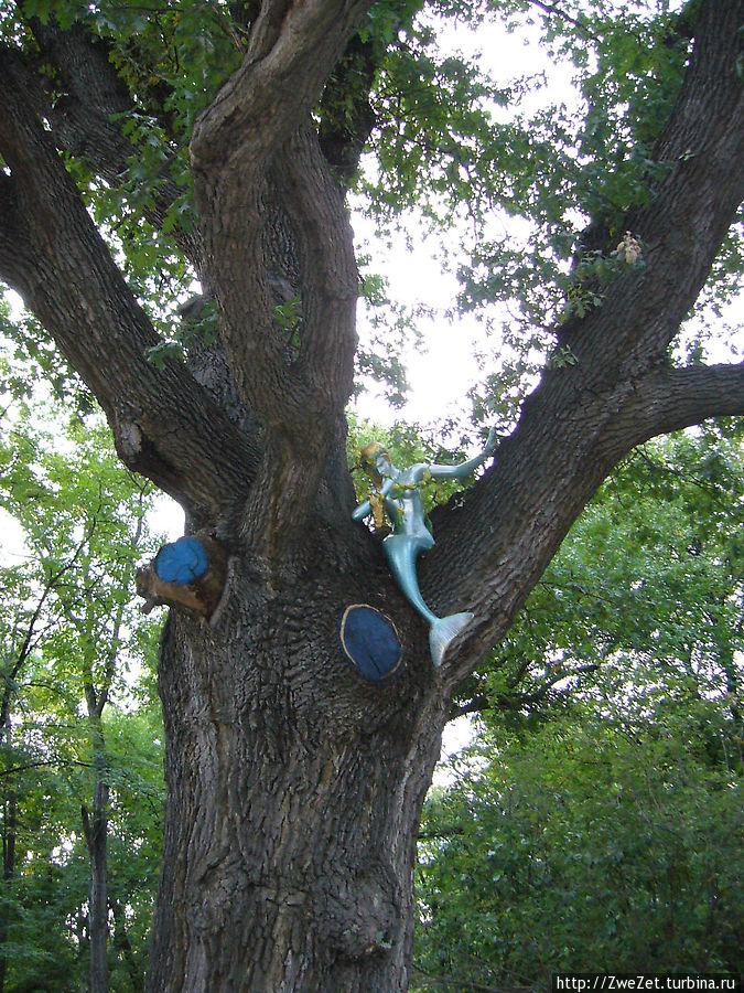 Русалка, что сидит на ветвях