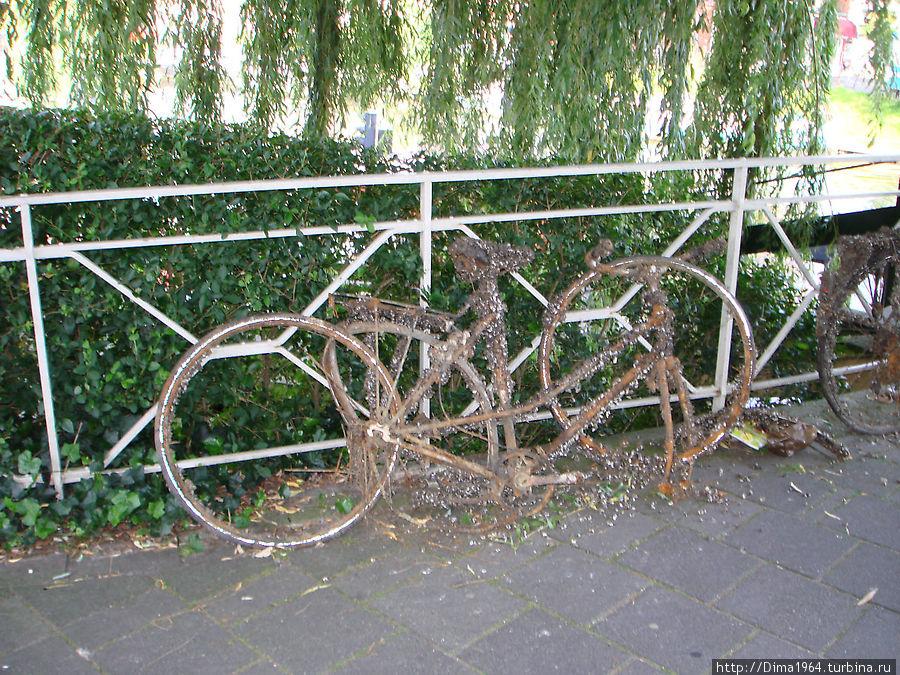А это, наверное, посетитель ресторана забыл свой велосипед. Шутка, конечно — просто понравился памятник честности голландцев.