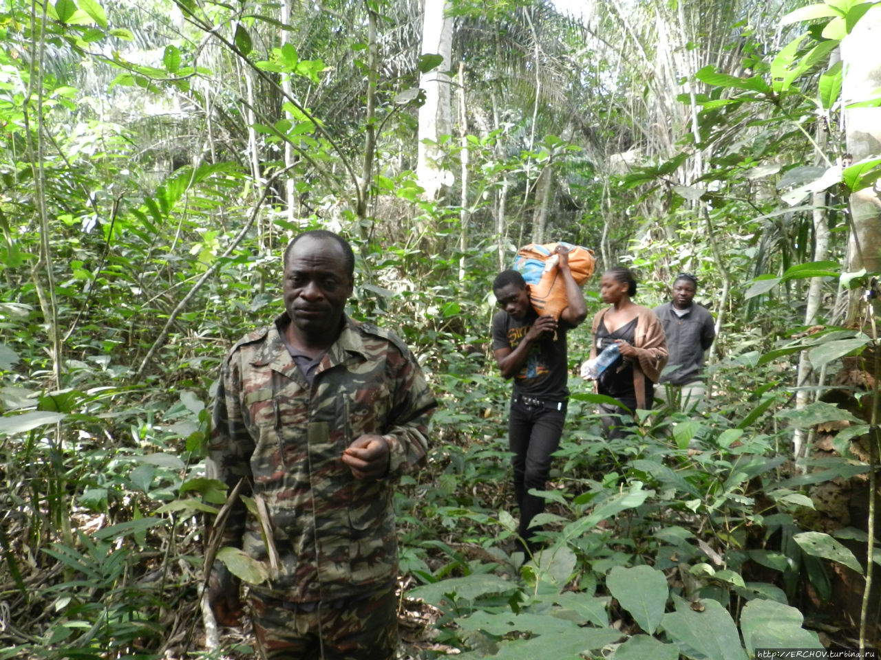 Камерун. Ч — 17. Пигмеи Бака и заповедник Джа Центральный регион, Камерун
