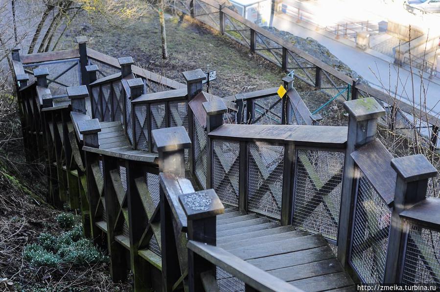 По всему пути можно несколько раз спуститься вниз по лестнице