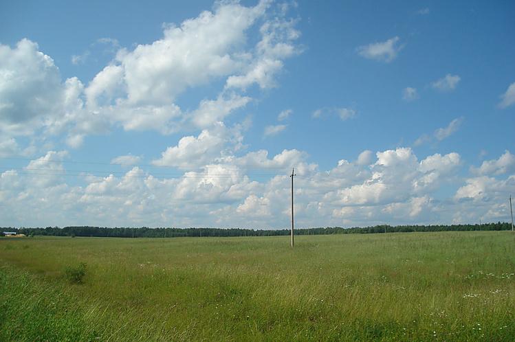 поле между Заяцким и Копы