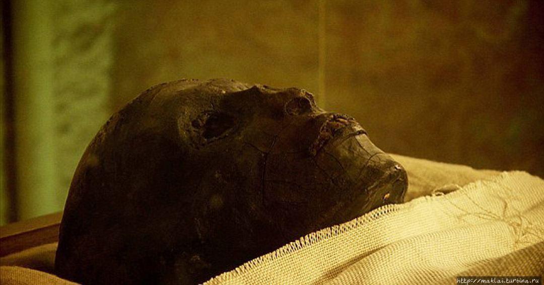 Мумия Тутанхамона. Из инт