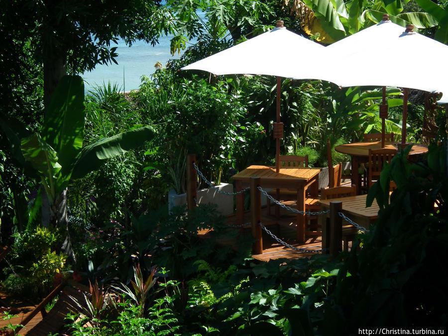 Место подачи завтрака вот здесь — под зонтиками в саду. Ну скажите мне, что еще надо?  ))