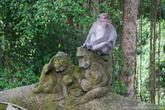 В парке очень много каменных обезьян.