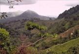 Горный массив Сьерра-Невада-де-Санта-Марта