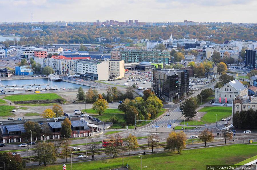 В левом углу Певческое поле, а за ним — самый крупный район города — Ласнамяэ, очень походий на спальный районы в России. Множество зелени — это парк Кадриорг.