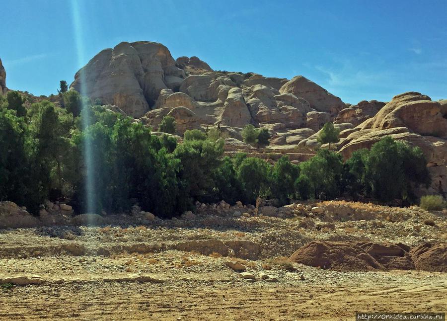 1200 метров по ущелью — каньон Петра Петра, Иордания
