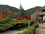 Длинная ветьв кедра в храме Йосиминедера. Типичный элемент японского сада. Но это самая длинная ветвь из тех, что мне доводилось видеть.