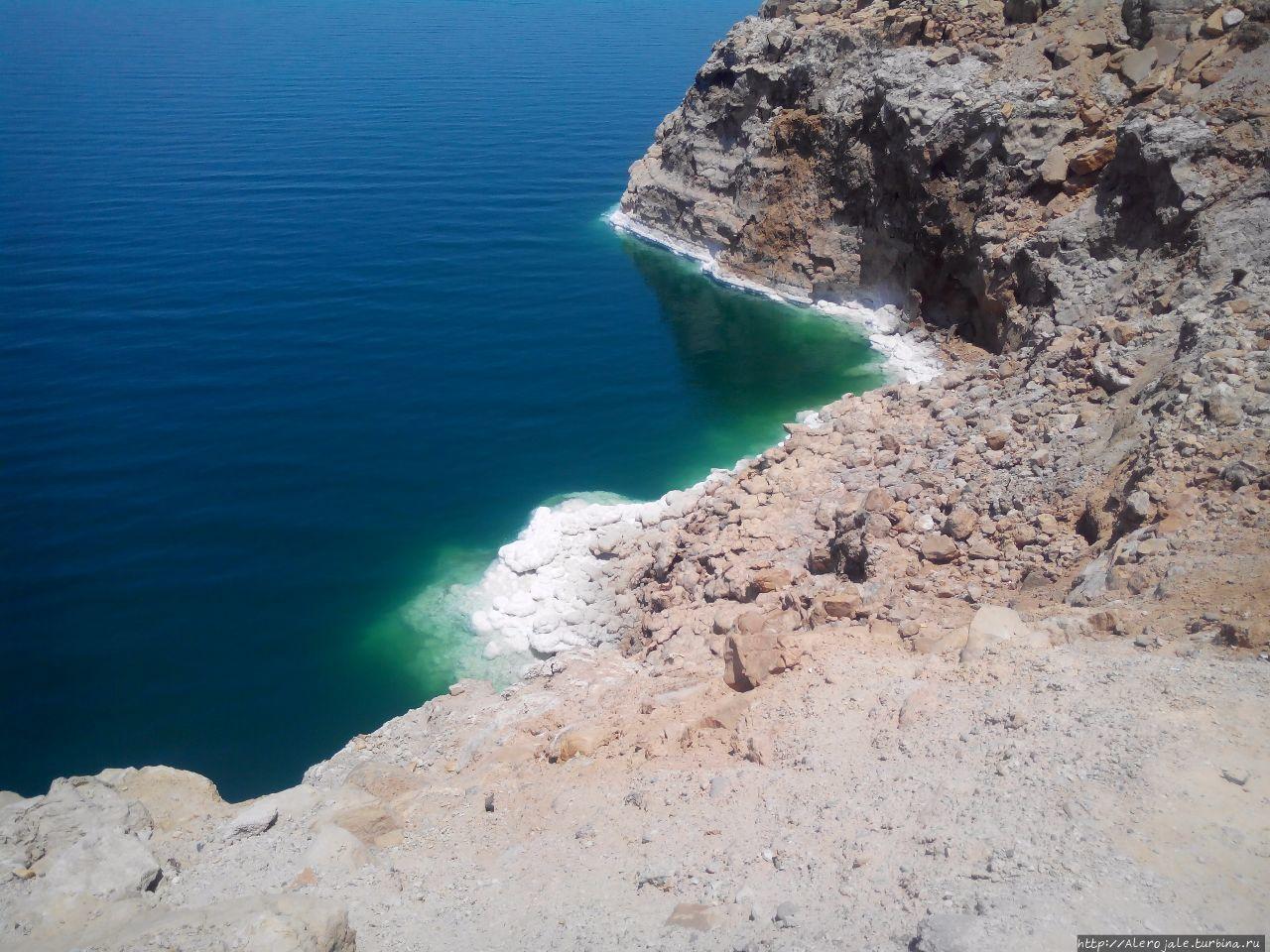 Мертвое море .. лучше поздно, чем никогда Мадаба, Иордания
