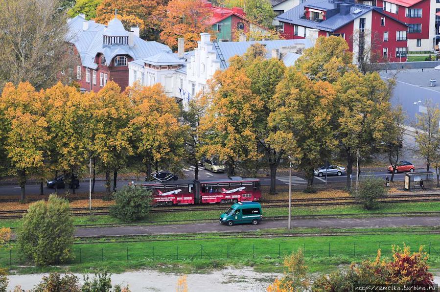 Но что это? Когда мы с вами ранее рассматривали Каламая (фото 3), то наверняка вы не заметили зеленую машину Муниципальной полиции, сотрудники которой контролируют наличие проездных билетов у пассажиров общественного транспорта. Просто так, в поле, можно сказать, останавливают трамвай (автобус, троллейбус), заходят внутрь и ловят зайцев. Штраф 40 евро, к слову.