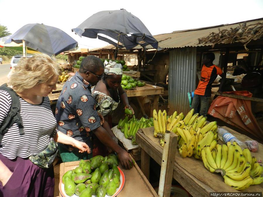 Камерун. Ч — 3. Нгаундере и его ламидо Нгаундере, Камерун