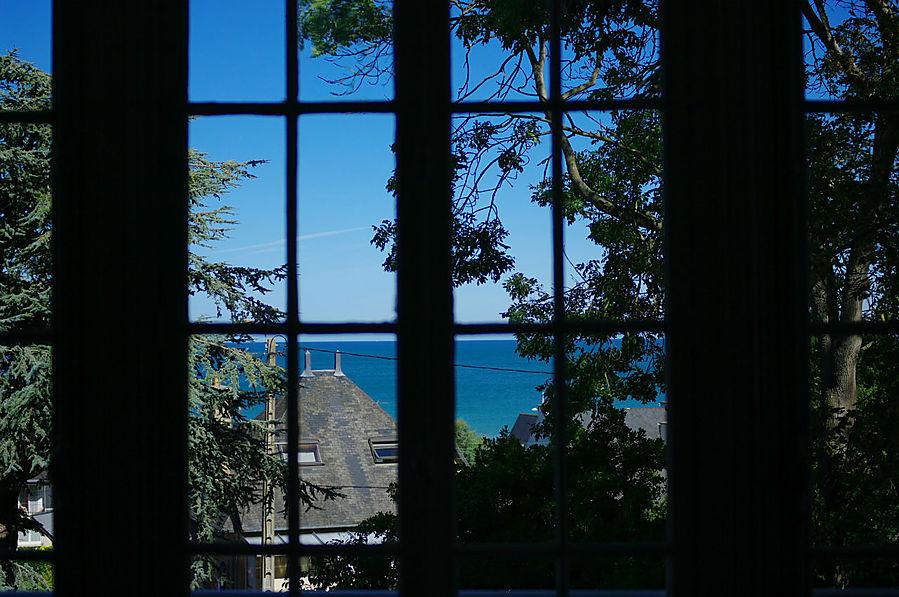 Волшебный вид из окна.