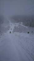 в день, когда катались на лыжах, был туман