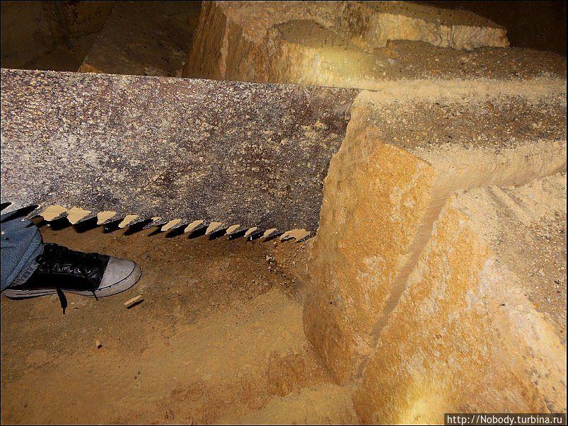 Нам тоже дали попилить))) Нелёгкая работа — но, честно говоря, пилить дрова цепной пилой намного тяжелее. Нерубайское, Украина