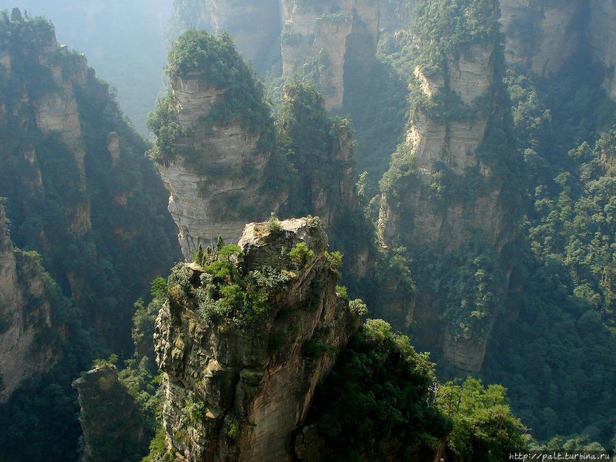 Оглушительная красота Тяньцзышаня Чжанцзяцзе Национальный Лесной Парк (Парк Аватар), Китай