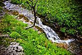 Обогнув малый Тхач, вышли к небольшой реке, где решено было сделать привал и отобедать.