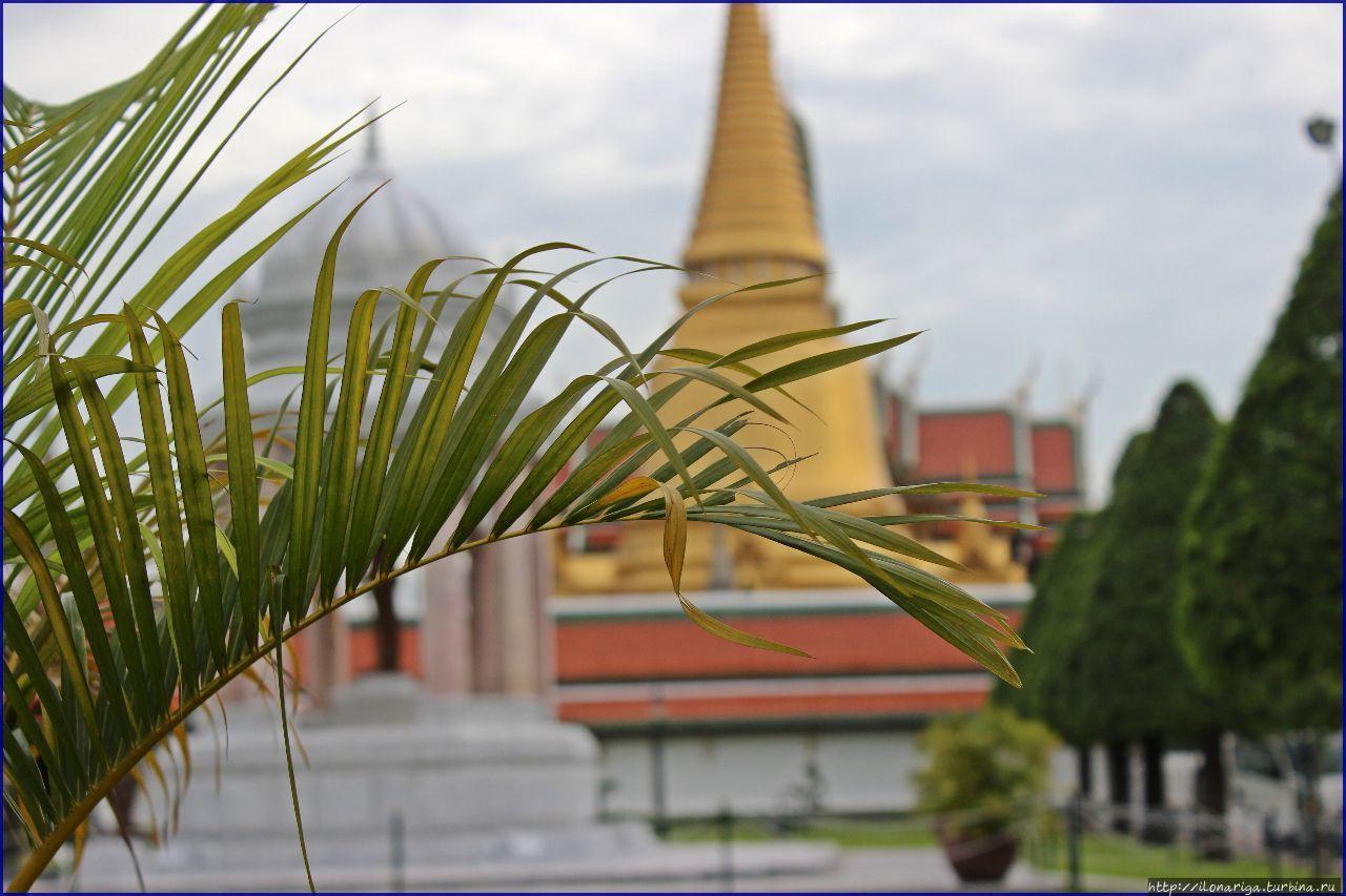 Бангкок — мои ворота в очарование Азии