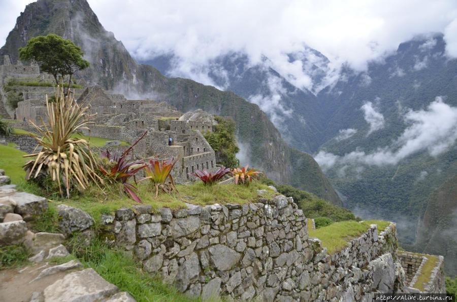 Пейзажи Мачу Пикчу Перу
