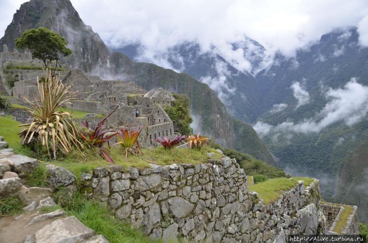 Пейзажи Мачу Пикчу
