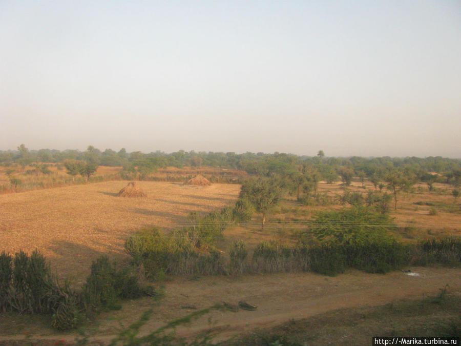 По дороге Удайпур-Аджмер, Индия Пушкар, Индия