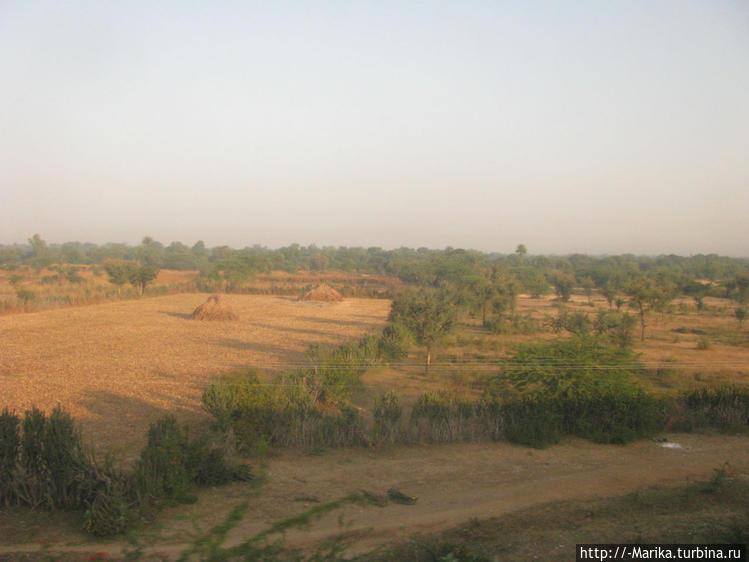 По дороге Удайпур-Аджмер,