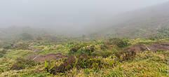 А это демонстрация того, как резко и быстро меняется погода на островах. На этой фотографии должно было быть озеро Лагоа до Фого, однако как вы можете заметить, здесь не видно ничего кроме тумана.