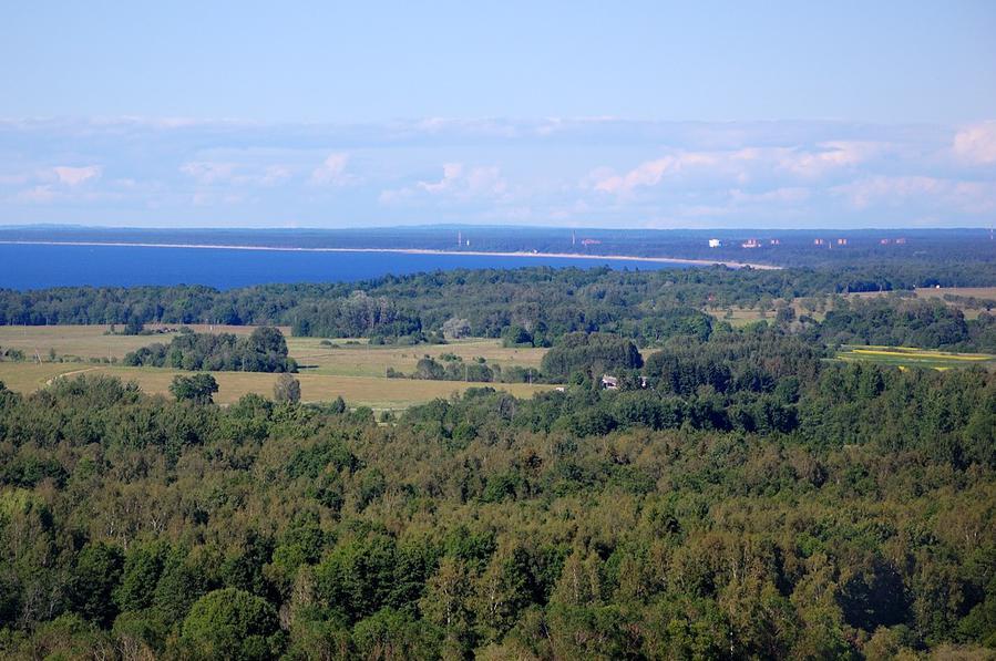 Вид на море, лес и Усть-Нарву