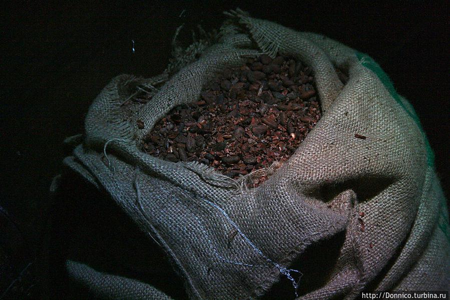 и бобов какао