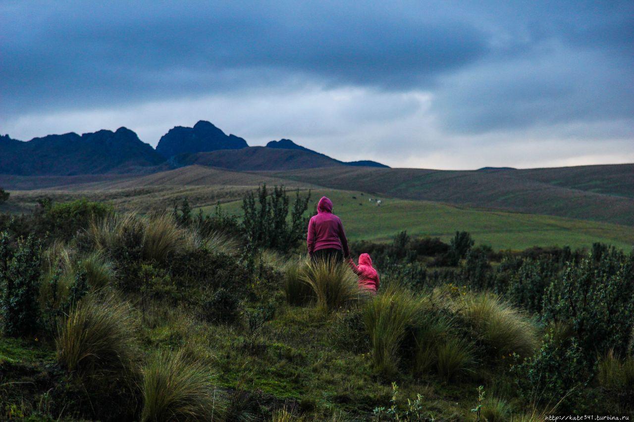Эквадор с трехлеткой. Часть 1. Котопакси Котопакси Национальный Парк, Эквадор