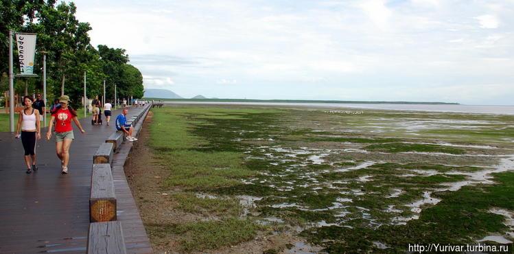 Отлив океана у набережной