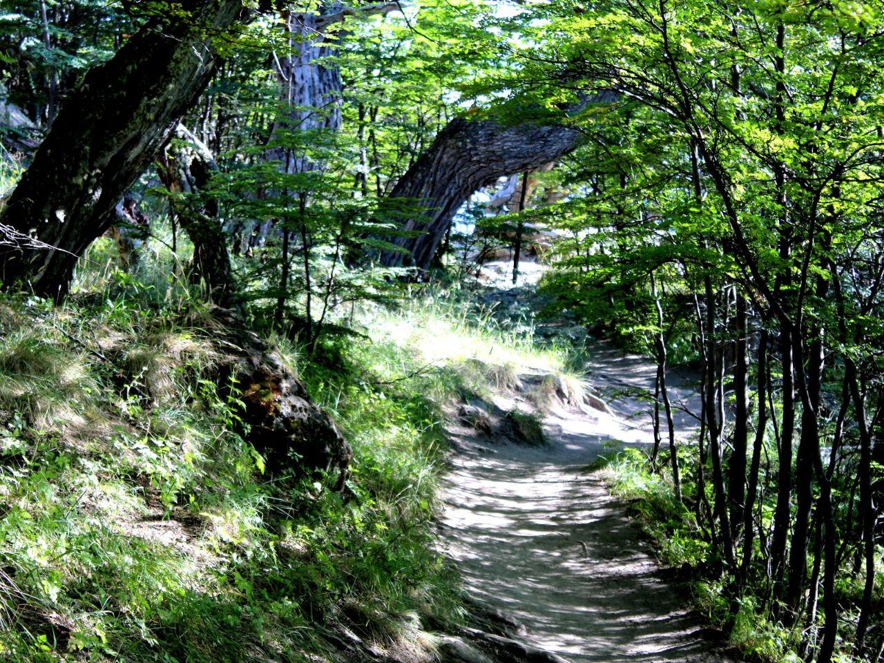 Тропа Фитц-Рой Лос-Гласьярес Национальный парк, Аргентина