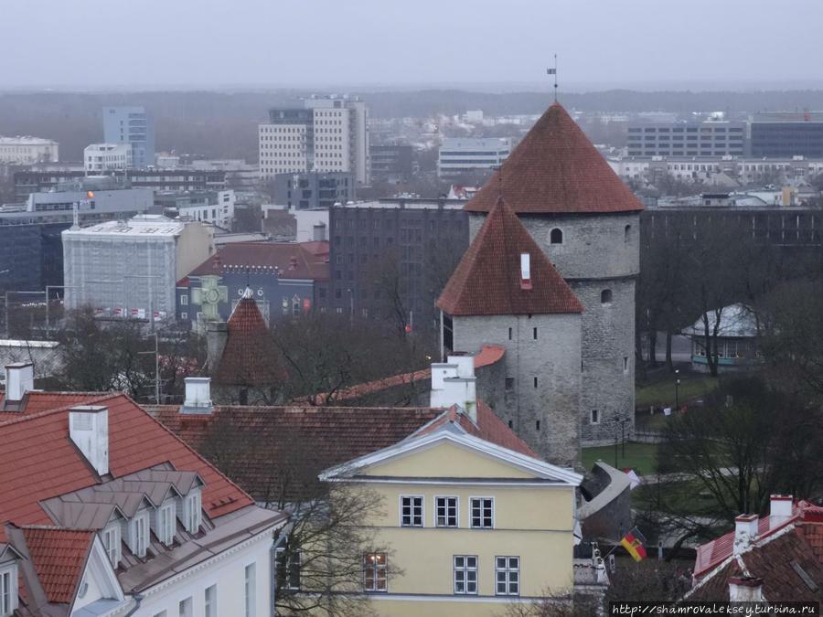 Башня Кик ин де Кёк / Kiek in de Kök