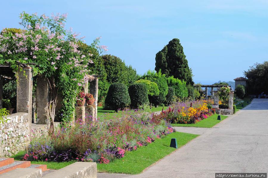 После ворот начинается главная аллея. Полевую руку от нее мандариновые деревья и обзорная площадка, а справа розы и различные закоулочки.