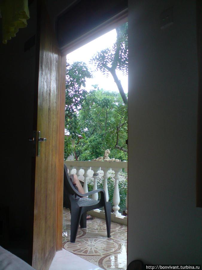 Вид из номера ранним утром
