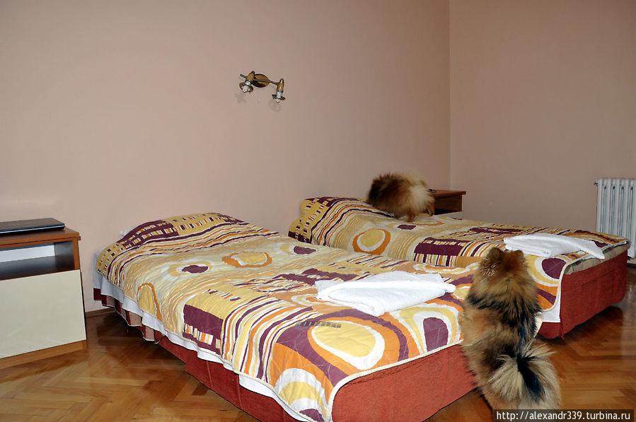 У каждого в этом номере своя кровать