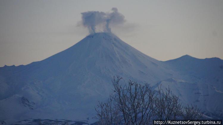 Авачинский вулкан от Елиз