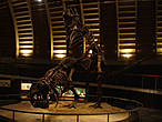 Юрский зал «описывает» второй период мезозойской эры (от 200 до 145 миллионов лет назад), который считается периодом расцвета динозавров. Имеет модели зауроподов. На дисплее отображается информация об анатомических особенностях, таким как вес, система кровообращения и относительный размер черепа.