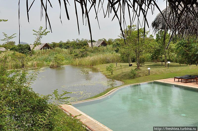 Бассейн отеля, край которого — над озером, вокруг которого стоят номера-бунгало.