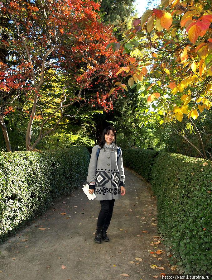 приятно пройтись по дорожкам, и в саду не так холодно как на открытых площадках