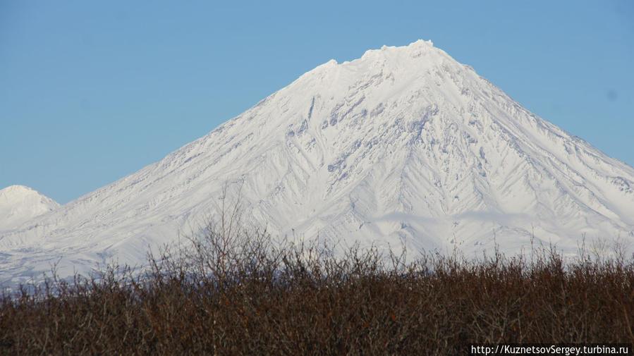 Корякский вулкан с Мишенной сопки