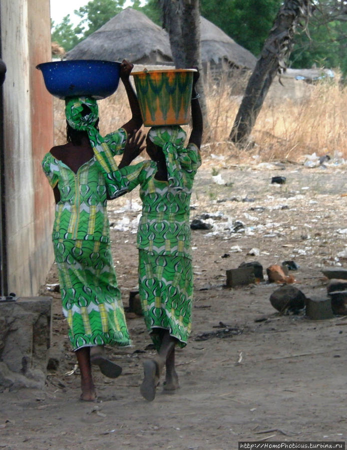 Типажи фульбе Тчамба, Камерун