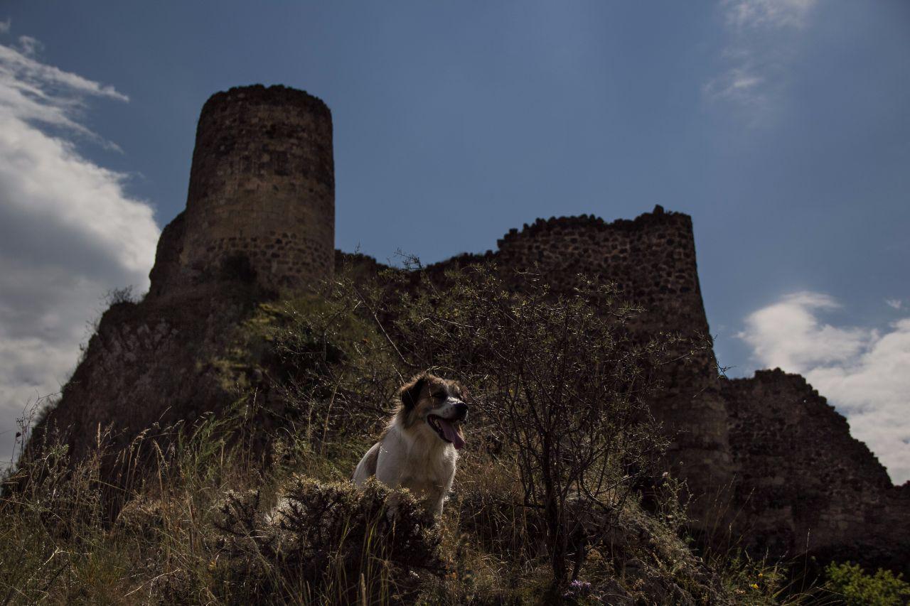 крепость Тмогви Тмогви, Грузия